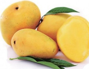 Ban on Indian mangoes lifted by European Union